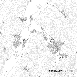 Schwarzplan von Wolnzach